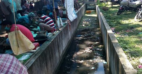 পার্বতীপুরে পরিবেশ দুষন চরমে : এডিস মশার আশংকা