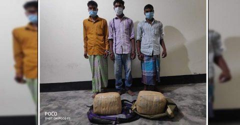 ১০ কেজি গাঁজাসহ ৩ জনকে গ্রেপ্তার করেছে চাঁপাইনবাবগঞ্জ ডিবি পুলিশ