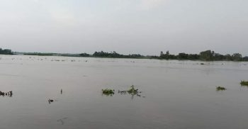 Flood situation worsens in Jamalpur