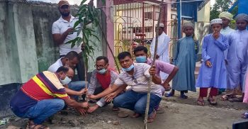 Tree planting in Mahipur on the initiative of Juba League